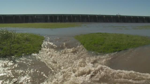 Spillway opening expected to affect fish other water species for Lake pontchartrain fish species